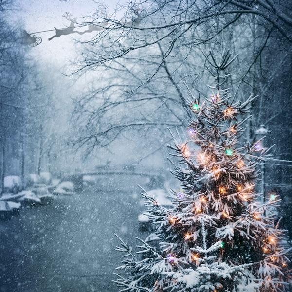 Weihnachtsfall